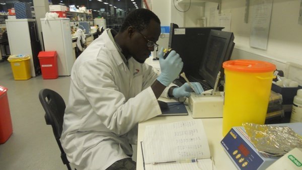 Targeting mosquito DNA to fight malaria - Dr El Hadji Amadou Niang